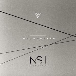 NSI - Introduction (2013)