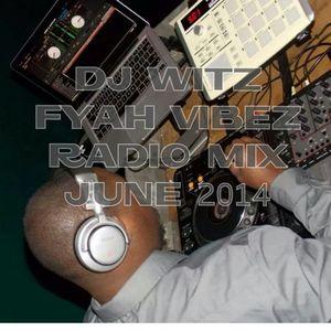 DJ WITZ - Fyah Vibez Radio Mix June 2014 #dancehall