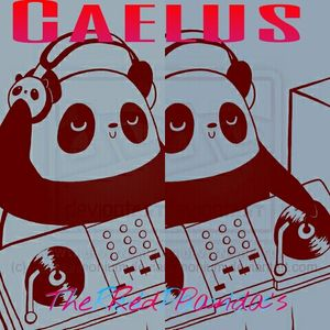 The Red Pandas pres. Caelus - by O'sshyah