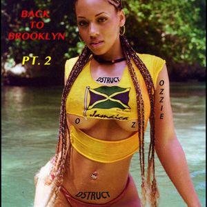 DJ Ozzie Dstruct - *DANCEHALL MIX 2013* - *BACK TO BROOKLYN PT. 2*