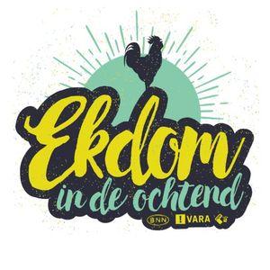 EKDOM IN DE OCHTEND - WOENSDAG 12 APRIL 2017