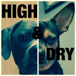 High and Dry radio with Emotiv and Mignone episode 004