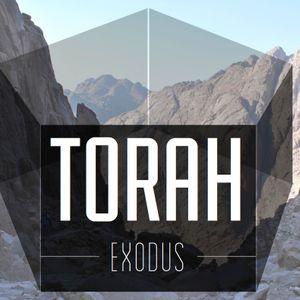 Torah, Pt 18 | How to Fight for Joy