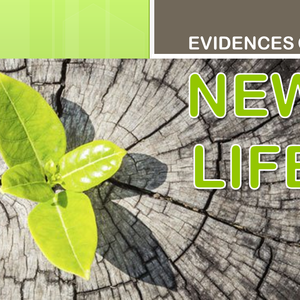 #1 Evidences of New Life: New Father – Adopted by God