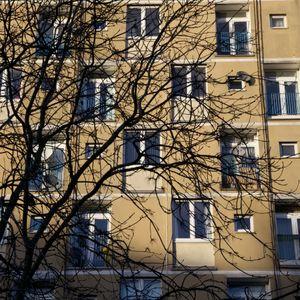 London Habitat Campaigns Re-examined - Lorena Zarate (President of HIC)