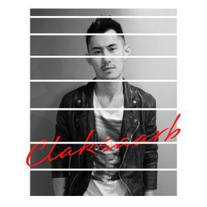 CLAKSAARB - 2011