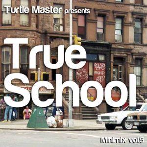 Turtle Master Minimix vol.5 - True School