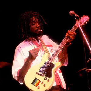 Peter Tosh - Park West 02/24/79 (SBD - Early Show)