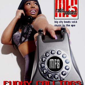 Funky Callings - Big City Beats 6