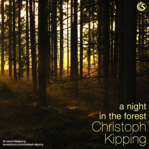 A Night In The Forest - Aug 2014