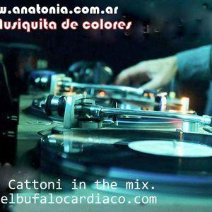 """21 años de Buena musica"" Podcast 27-36 Mixed Fede cattoni."