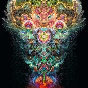 Going With The Cosmic Flow Vol.2: Awakening Spirit