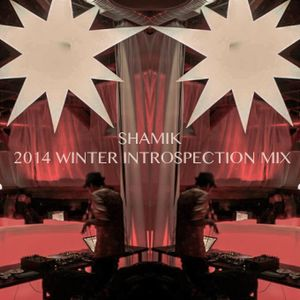 2014 Winter Introspection Mix