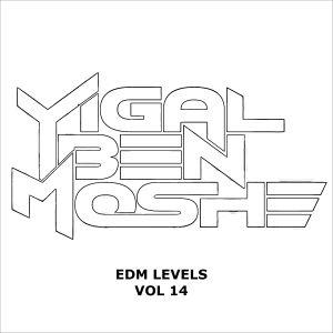 Yigal Ben Moshe EDM Levels Vol 13
