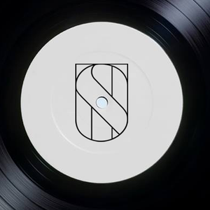 Techno Scene Podcast #9 - Venice Calypso