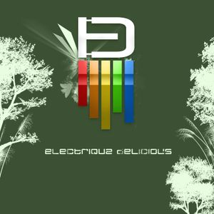 Electrique Delicious Podcast #8 by Marc Poppcke (Guestmix)