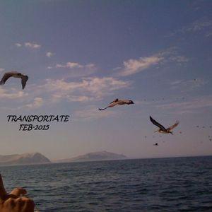 Transportate Deep 02-2015