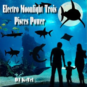DJ K-Tel Electro Moonlight Trois - PIsces Power