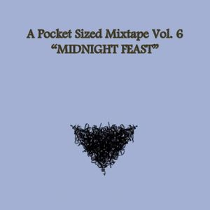 A Pocket Sized Mixtape Vol. 6: Midnight Feast