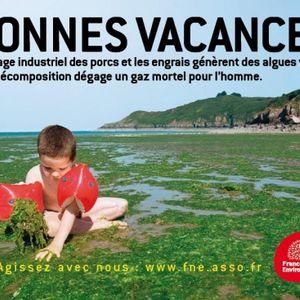 La Bretagne enlisée dans les marées vertes