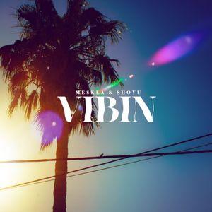 VIBIN. A mix by Meskla & Shoyu