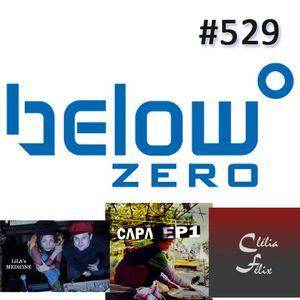 Below Zero #529