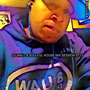 DJ WALI-B SOULFUL HOUSE MIX SESSION PT 13