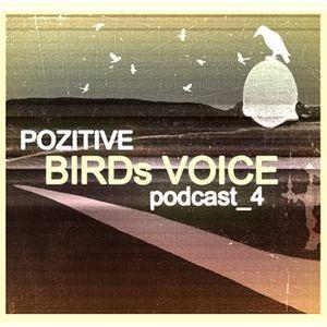 Pozitive_Birds Voice_podcast 4