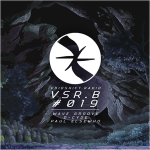 VSR Broadcast no. 19 - wave Groove, D-Cyde, Paul Elsewho