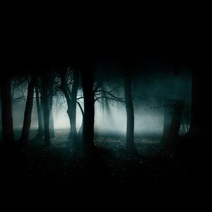 G.Yorgov - Fade Into The Darkness (08.11.2012)