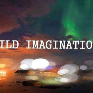 Wild Imagination 008