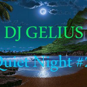 DJ GELIUS - Quiet Night #2 (29.01.2013)