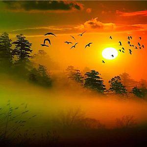 """Neimis B - Žalias Rudas Lapas (2012.10.11) """"Absolute Madness -036-"""""""