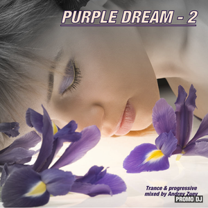 Andrey Zuev Purple Dream 2.mp3(227.5MB)