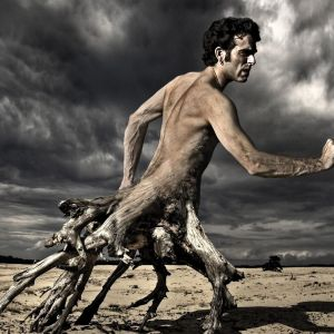 Evolution Of A Man