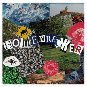 Video Avenue | Homewrecker