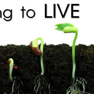 Dying to Live - Part IX - Audio