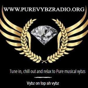 Pure Vybz Radio - Fyah Friday-  DJ Red Lion 29 11 2019
