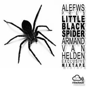 Ale Flowers Little Black Spider Armand Van Helden Mixtape