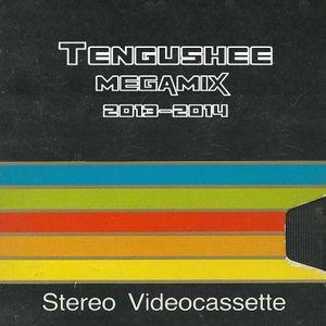 Tengushee Megamix 2013-2014