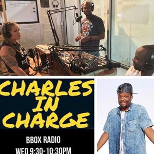 Charles In Charge 91317