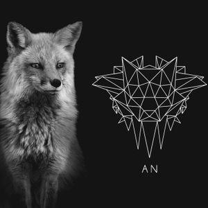 Animal Night HYPE Mix