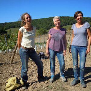 Trajectoire 3 Des vigneronnes dans les vignes du Trièves