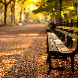 Mixcloud Weather: Autumn