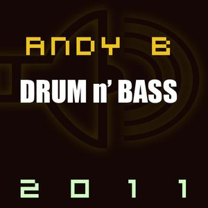 DnB In the Mix 2011