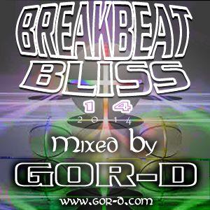 Break Beat Bliss 14