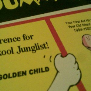 JUNGLE FOR DUMMIES - 2000