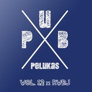 Pub Pelukas vol.12 - RVDJ