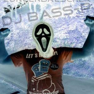 DJ Bass-P - House Besuch ( House set 25.06.2012 )