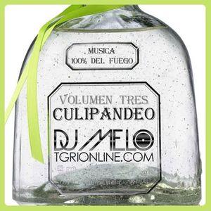 TGRIOnline.com presents DJ Melo - Culipandeo Volumen Tres (8-18-10)